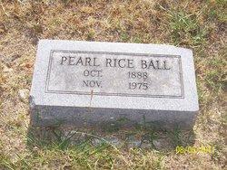 Pearl <I>Rice</I> Ball