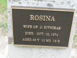 Rosina <I>Momenteller</I> Eitniear