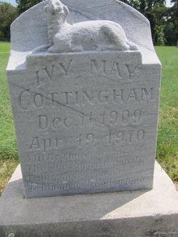 Ivy May Cottingham