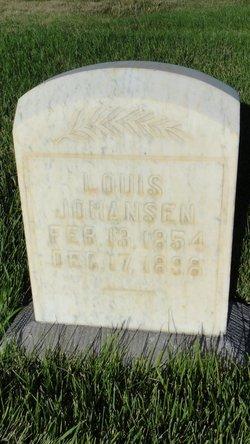 Lois Johansen