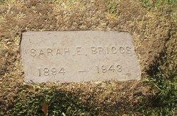 Sarah Ellen <I>Hopper</I> Briggs