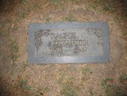 Rachel Catherine <I>Mitchel</I> Alexander