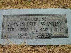 Vernon Estel Brantley