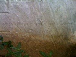 Garret Walling
