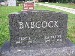 Troy L Babcock