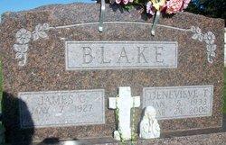 Genevieve Theresa <I>Retterath</I> Blake
