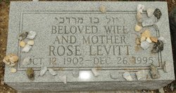 Rose <I>Levitt</I> Goldstein