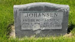 Annie Christina <I>Miller</I> Johansen