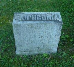 Sophronia <I>Dorr</I> Beckwith
