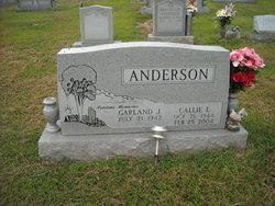 Callie E Anderson