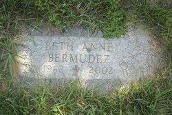 Beth Anne <I>Borer</I> Bermudez