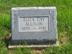 Eliza Gay Allison