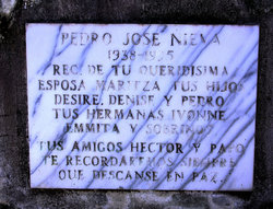 Pedro Jose Nieva