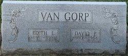 David P VanGorp