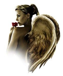 angelsaroundme2