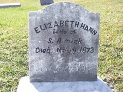 Elizabeth <I>Hann</I> Amick