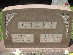 Mary Victoria <I>Adkins</I> Grass