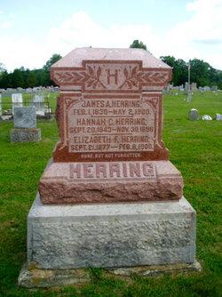 Hannah <I>Custer</I> Herring
