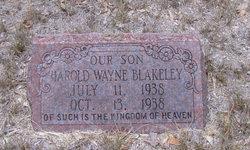 Harold Wayne Blakeley