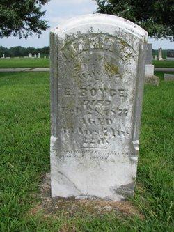 Maria E. Boyce