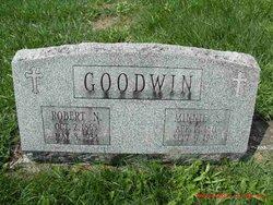 Robert N Goodwin