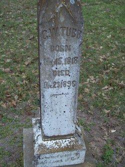 George Washington Tubb