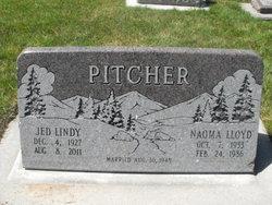 Jed Lindy Pitcher