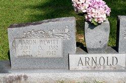 Aaron Hewitt Arnold