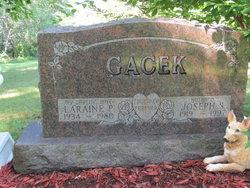 Laraine Pearl <I>Teed</I> Gacek