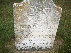 Mary J Jacob