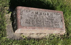 "Wilhelmine Dorothea ""Minnie"" <I>Luckow</I> Amborn"