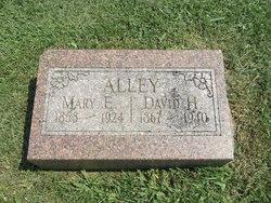 David H. Alley
