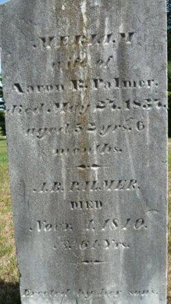 Miriam <I>Harriman</I> Palmer