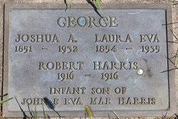 Joshua A George