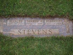 Robert Paul Stevens