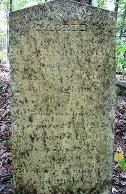 Louisa Jane <I>Walton</I> Paschall