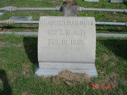 Adam Holman Moss