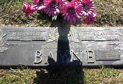 Mary Estabelle <I>Hammer</I> Bayne