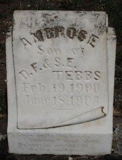 Ambrose James Tebbs