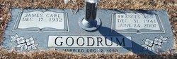 Frances Ann <I>Tribble</I> Goodrum