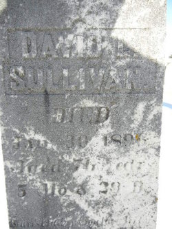 David Laurer Sullivan