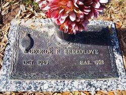 George Robert Breedlove