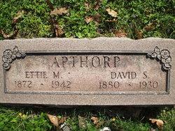 David Apthorp
