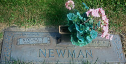 Martin B Newman