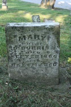 Mary <I>Horton</I> Burris