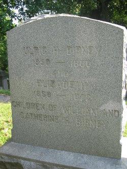 Ulrich Hoffman Birney