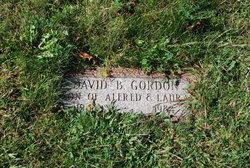 David B Gordon