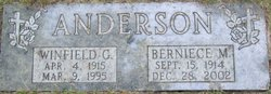 Winfield G Anderson