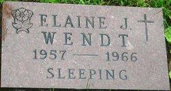 Elaine J. Wendt