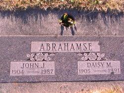John J Abrahamse